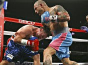 cotto-geale-1